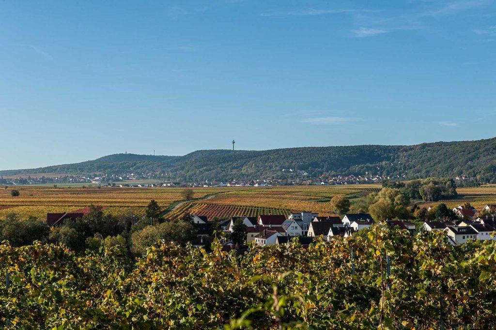Blick ins Leiningerland